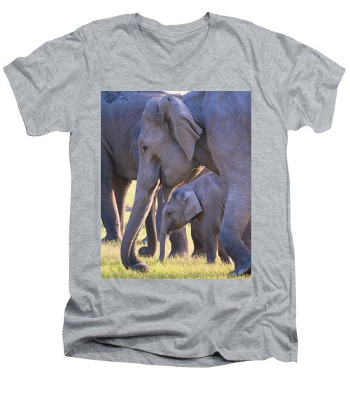 Dhikala Elephants Men's V-Neck T-Shirt