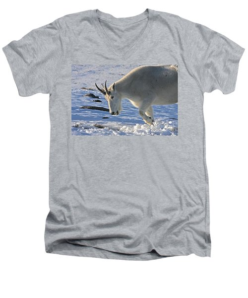 Digging For Dinner Men's V-Neck T-Shirt by Jim Garrison