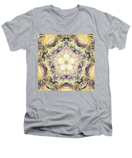 Digmandala Simha Men's V-Neck T-Shirt