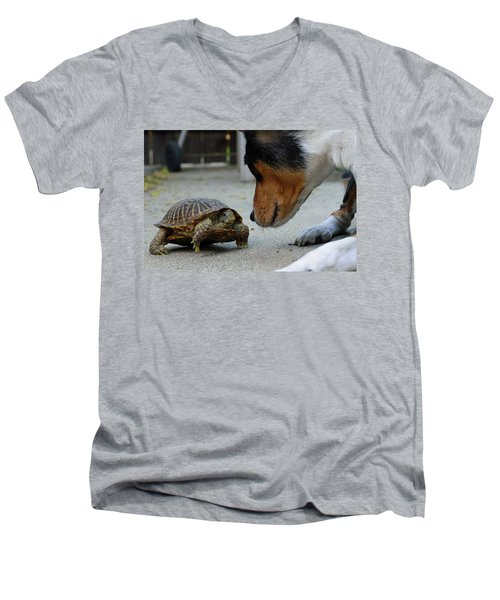 Dog And Turtle Men's V-Neck T-Shirt by Shoal Hollingsworth