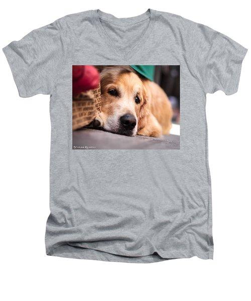 Men's V-Neck T-Shirt featuring the photograph Dog's Sorrow by Stwayne Keubrick