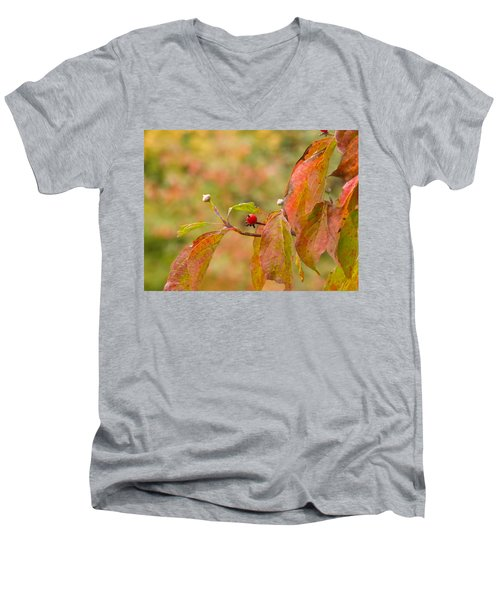 Men's V-Neck T-Shirt featuring the photograph Dogwood Berrie by Nick Kirby