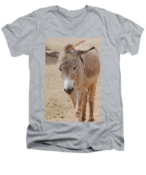 Donkey Men's V-Neck T-Shirt by DejaVu Designs