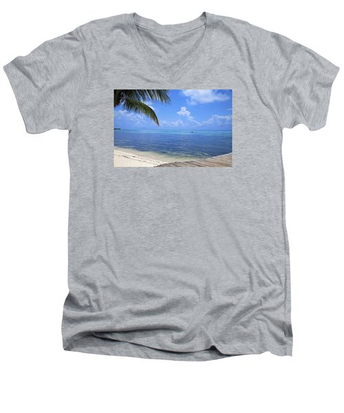 Down Island Men's V-Neck T-Shirt by Stephen Anderson