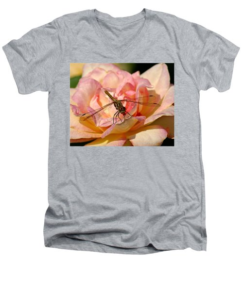 Dragonfly On A Rose Men's V-Neck T-Shirt
