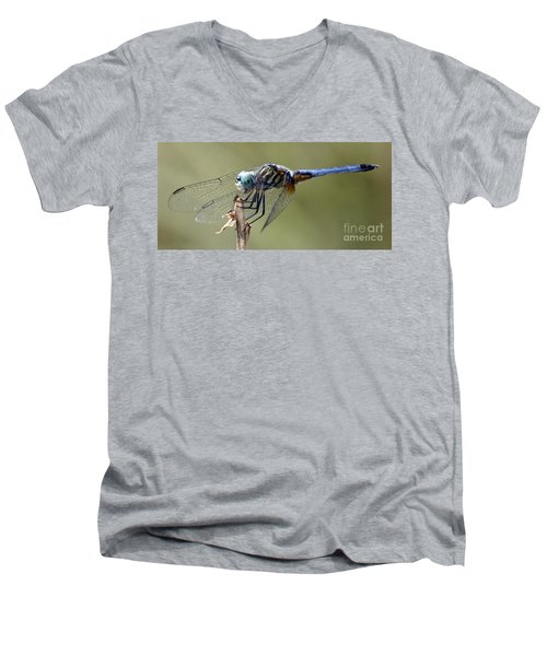 Dragonfly Smile Men's V-Neck T-Shirt