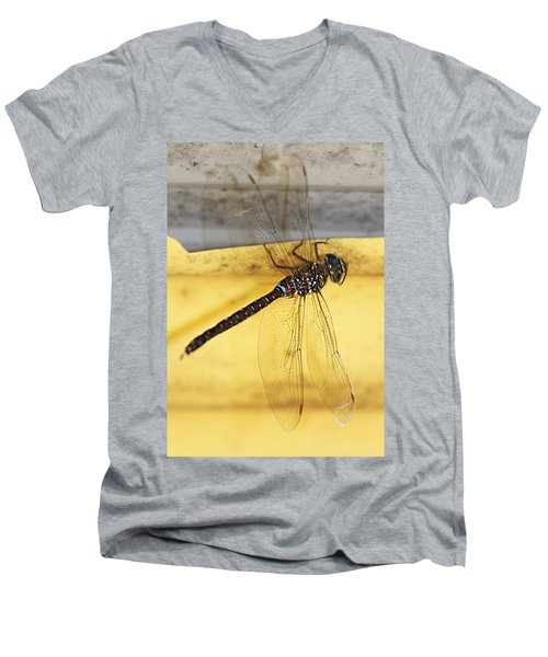 Men's V-Neck T-Shirt featuring the photograph Dragonfly Web by Melanie Lankford Photography