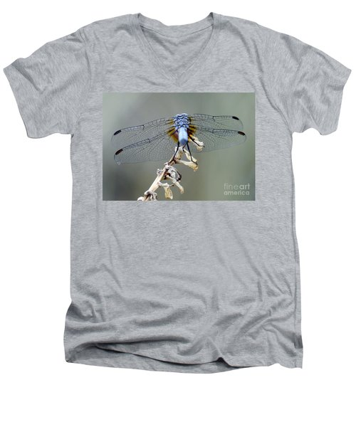 Dragonfly Wing Details II Men's V-Neck T-Shirt