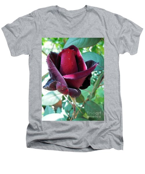 Men's V-Neck T-Shirt featuring the photograph Droplets On The Petals by Vesna Martinjak