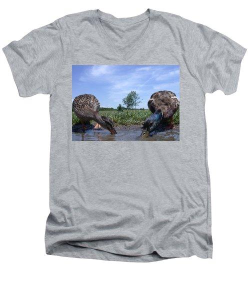 Ducks Eye View Men's V-Neck T-Shirt