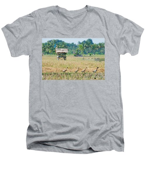 Ducks Men's V-Neck T-Shirt