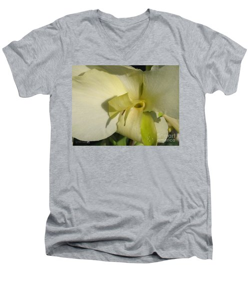 Men's V-Neck T-Shirt featuring the photograph Dwarf Canna Lily Named Ermine by J McCombie