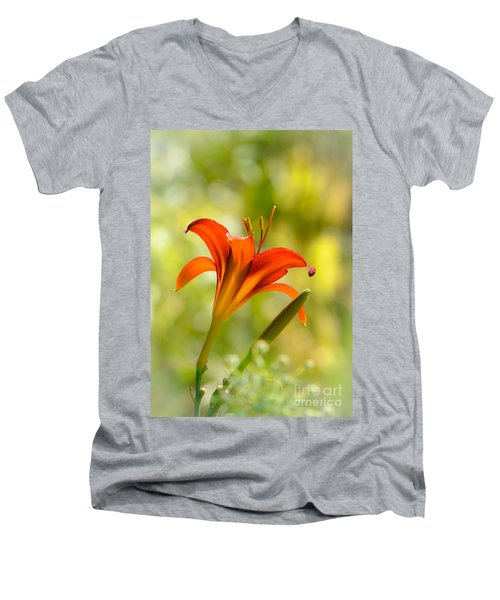 Early Morning Portrait Men's V-Neck T-Shirt by Amy Porter