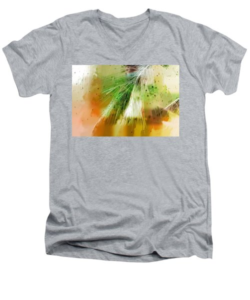 Earth Silk Men's V-Neck T-Shirt