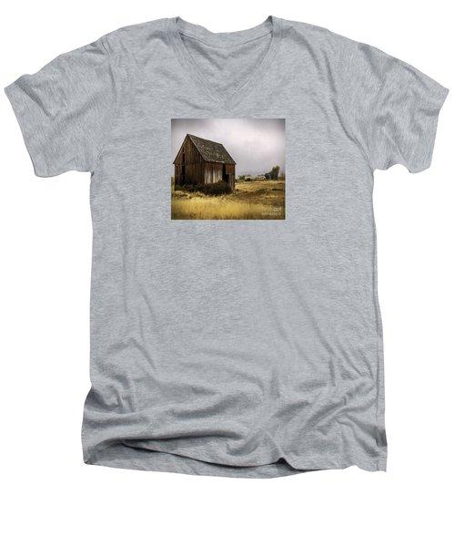 Earthly Possessions Men's V-Neck T-Shirt