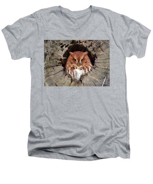 Eastern Screech Owl Men's V-Neck T-Shirt