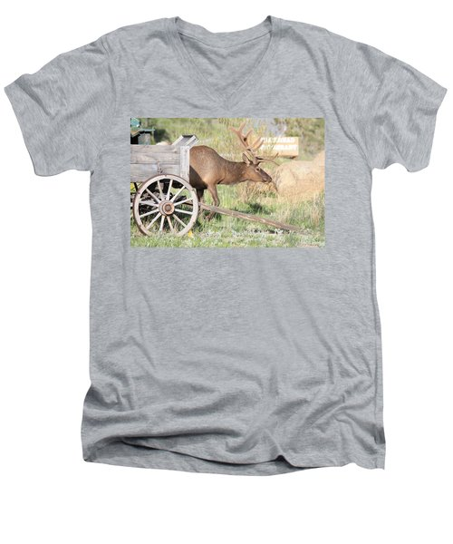 Men's V-Neck T-Shirt featuring the photograph Elk Drawn Carriage by Shane Bechler
