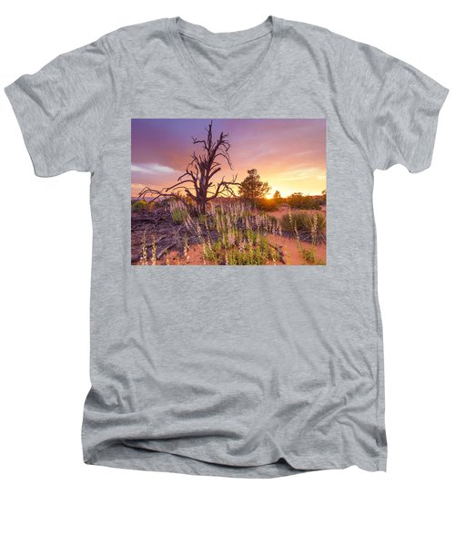 Enchanted Men's V-Neck T-Shirt