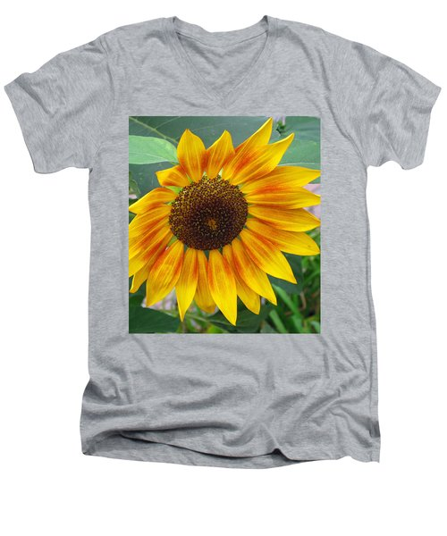 Men's V-Neck T-Shirt featuring the photograph End Of Summer Sunflower by Barbara McDevitt