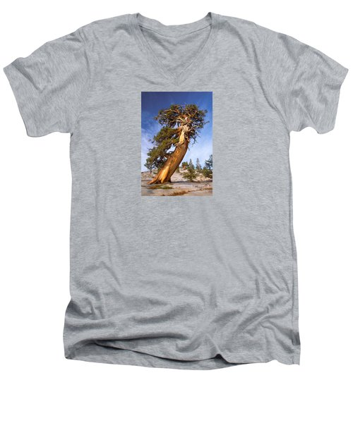 Endurance Men's V-Neck T-Shirt by Alice Cahill