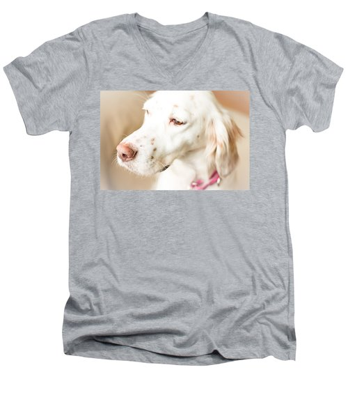 English Setter In Natural Light Men's V-Neck T-Shirt