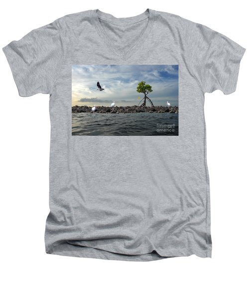 Men's V-Neck T-Shirt featuring the photograph Everglade Scene by Dan Friend