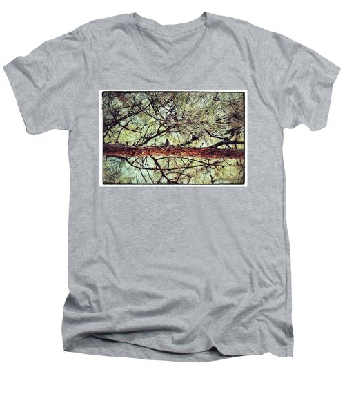 Men's V-Neck T-Shirt featuring the photograph Evergreen Bird by Tara Potts