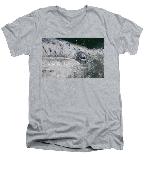 Men's V-Neck T-Shirt featuring the photograph Eye Of A Young Gray Whale by Don Schwartz