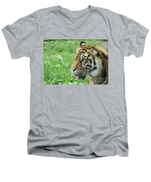 Men's V-Neck T-Shirt featuring the photograph Eye Of The Tiger by Lingfai Leung