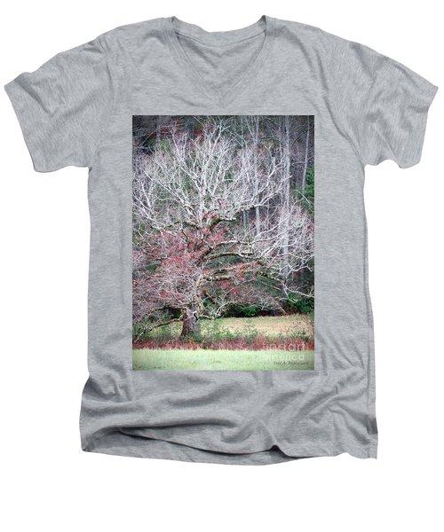 Fall At Cades Cove Men's V-Neck T-Shirt
