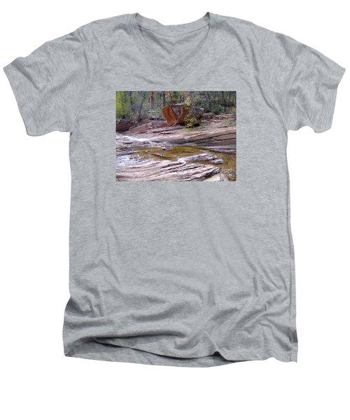 Fall Color 6419 Men's V-Neck T-Shirt