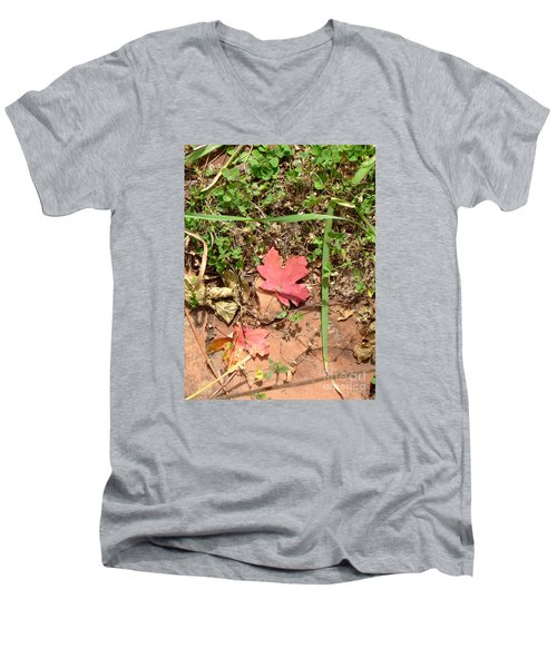 Fall Colors 6342 Men's V-Neck T-Shirt