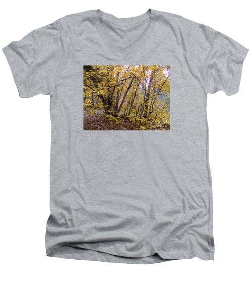 Fall Colors 6435 Men's V-Neck T-Shirt