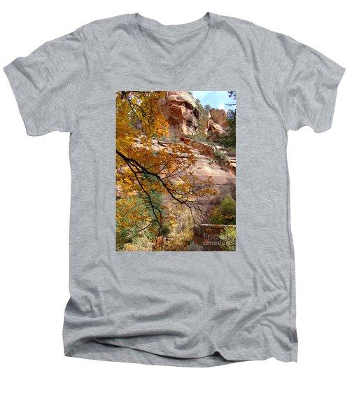 Fall Colors 6497 Men's V-Neck T-Shirt