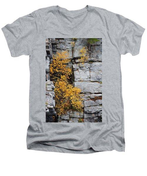 Fall Foliage Colors 01 Men's V-Neck T-Shirt
