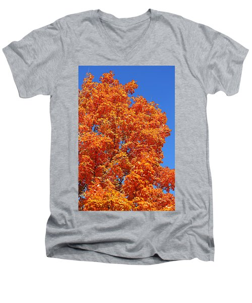 Fall Foliage Colors 18 Men's V-Neck T-Shirt