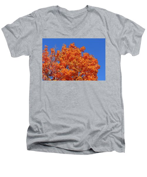 Fall Foliage Colors 19 Men's V-Neck T-Shirt