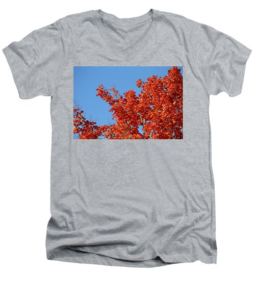 Fall Foliage Colors 20 Men's V-Neck T-Shirt