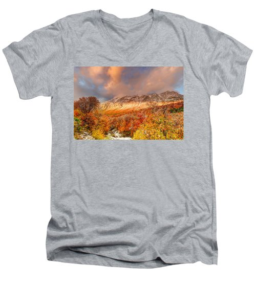 Fall On Display Men's V-Neck T-Shirt