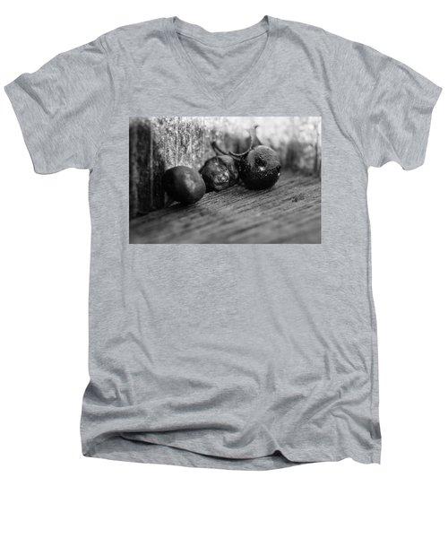Fallen Berries Men's V-Neck T-Shirt