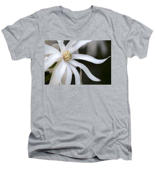 Fancy Azalea Men's V-Neck T-Shirt