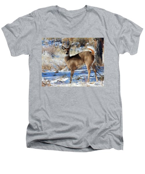 Men's V-Neck T-Shirt featuring the photograph Fancy Pants by Jim Garrison
