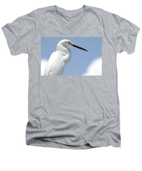 Feathers Men's V-Neck T-Shirt