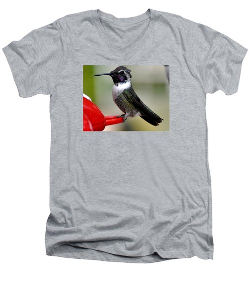 Men's V-Neck T-Shirt featuring the photograph Male Anna On Feeder Perch Posing by Jay Milo