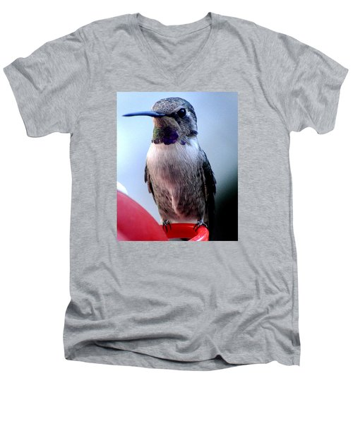 Men's V-Neck T-Shirt featuring the photograph Female Anna With Purple Blue Throat by Jay Milo