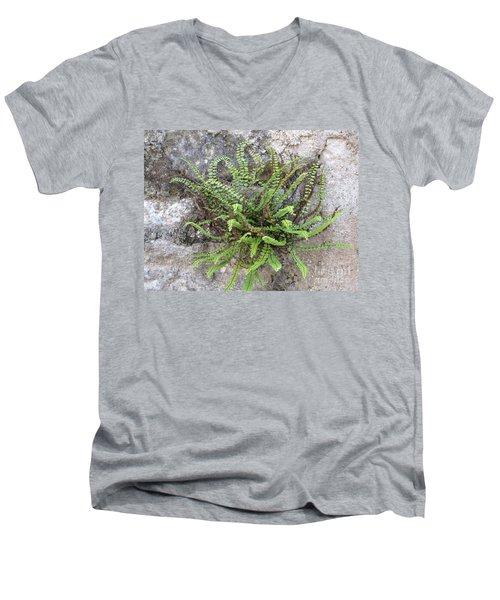 Fern Tendrils  Men's V-Neck T-Shirt