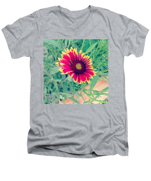 Men's V-Neck T-Shirt featuring the photograph Fire Daisy by Thomasina Durkay