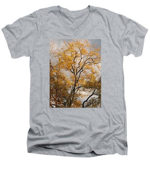 First Day Of Winter 2 Men's V-Neck T-Shirt by Connie Fox