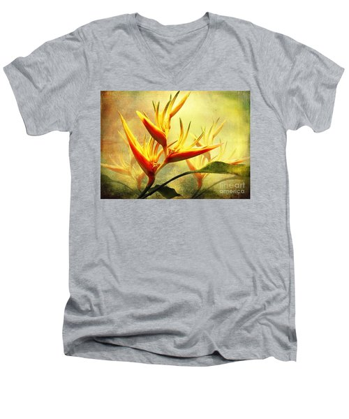 Flames Of Paradise Men's V-Neck T-Shirt