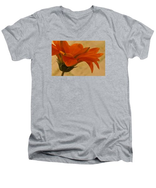 Flaunting Gazani Men's V-Neck T-Shirt by Sandra Foster